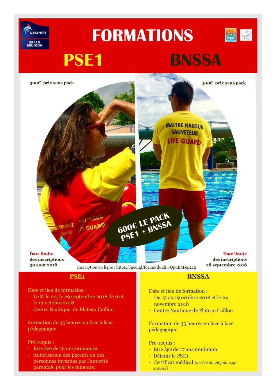 Plaquette BNSSA :PSE1